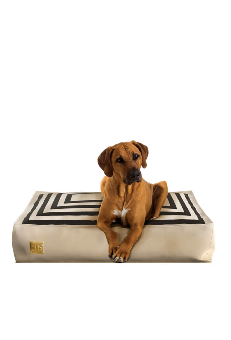 George Dog Bed for our four legs friends